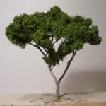 Baum Fertig